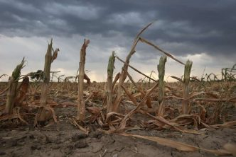 140317-crop-climate-change