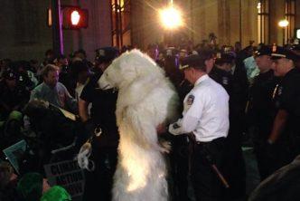 polar_bear_arrest