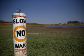 slownowake