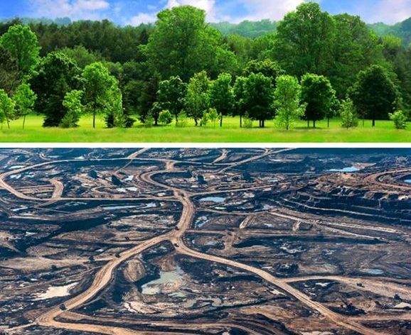 earthoncapitalism