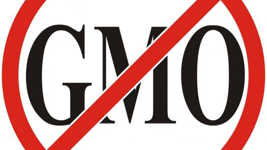 no-gmo4