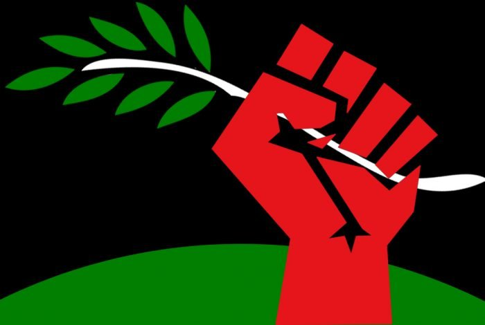 Olive branch in red fist